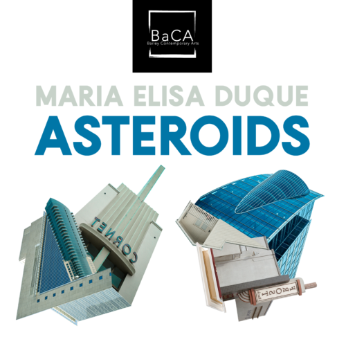 """Asteroids"" by Maria Elisa Duque"