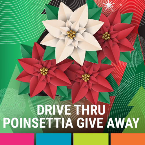 Drive Thru Poinsettia and Blessing Bag Give-Away