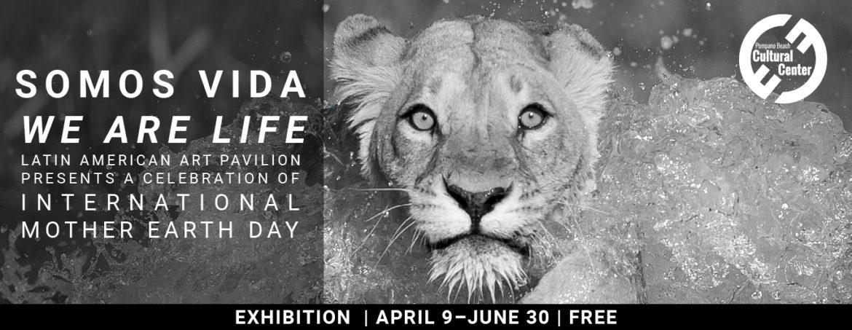 Somos Vida | We are Life Exhibition